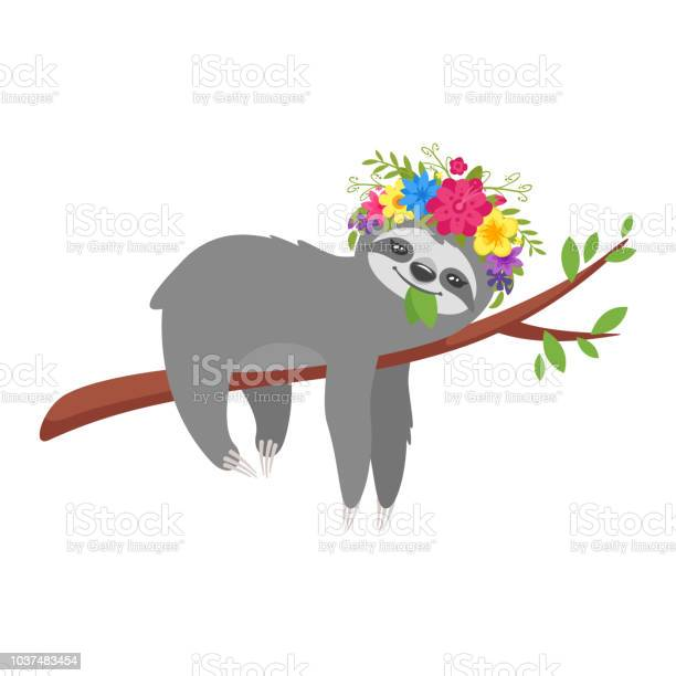 Sloth character in floral wreath vector id1037483454?b=1&k=6&m=1037483454&s=612x612&h=qwzqypp c1mduz81xslinmmo7ink4r6e qjhfb2an5e=