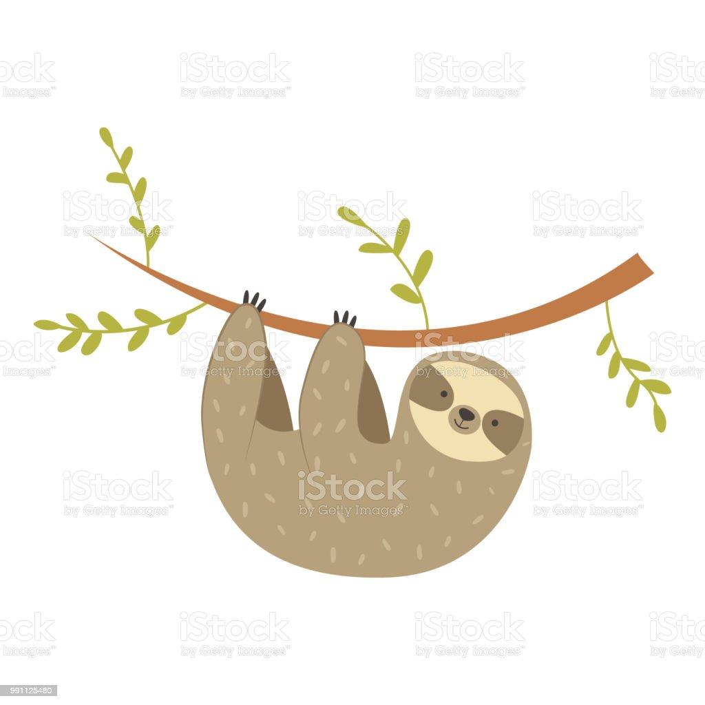 Ilustración de Oso Perezoso Cuelga En El árbol Adorables Dibujos ...