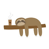 Sloth sleeping on tree branch. Cute lazy cartoon kawaii funny character. I love coffee paper cup drink. Slow down. Wild joungle animal collection. White background. Flat design. Vector illustration