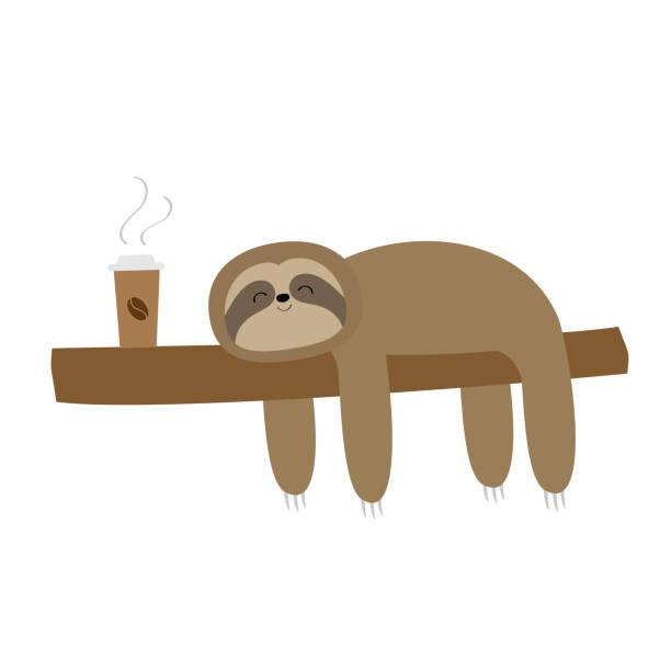 faultier schlafen auf baum zweig. süße faule cartoon kawaii lustige charakter. ich liebe kaffee-papier-tasse trinken. mach langsamer. wilde joungle tiersammlung. abgeschnitten. weißer hintergrund. flaches design. - faul ast stock-grafiken, -clipart, -cartoons und -symbole