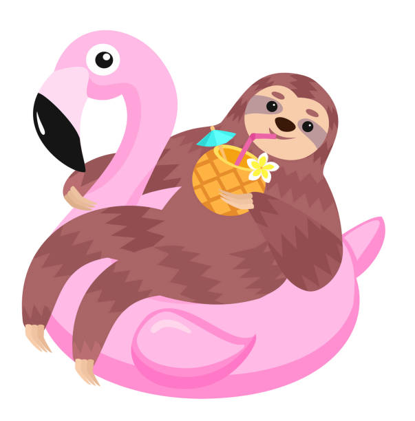 Sloth with flamingo inflatable float. Vector illustration. Sloth with flamingo inflatable float. Vector illustration. pool party stock illustrations