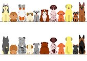 small and large dogs border set, front view and rear view.