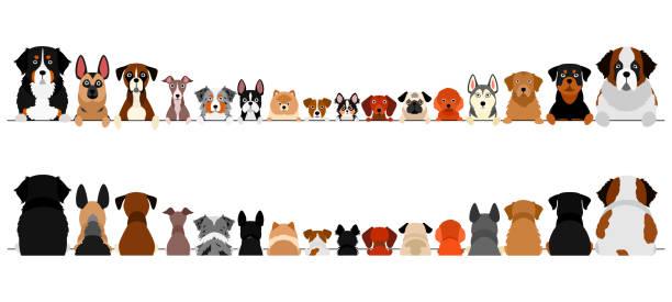 小型および大型犬ボーダーセット、上半身、前部および背部 ベクターアートイラスト