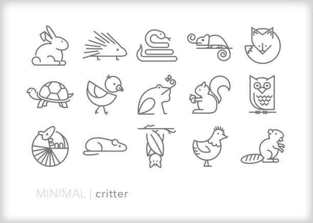 Small animal critter line icon set Set of 15 critter line icons of small animals found in the wild, on farms, in homes and in zoos beaver stock illustrations