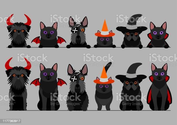 Small black halloween dog and cat border set vector id1177363917?b=1&k=6&m=1177363917&s=612x612&h=4gxv7lfapxr1ifpa6kixpz6stqzst5tu9k 02h4ijuw=