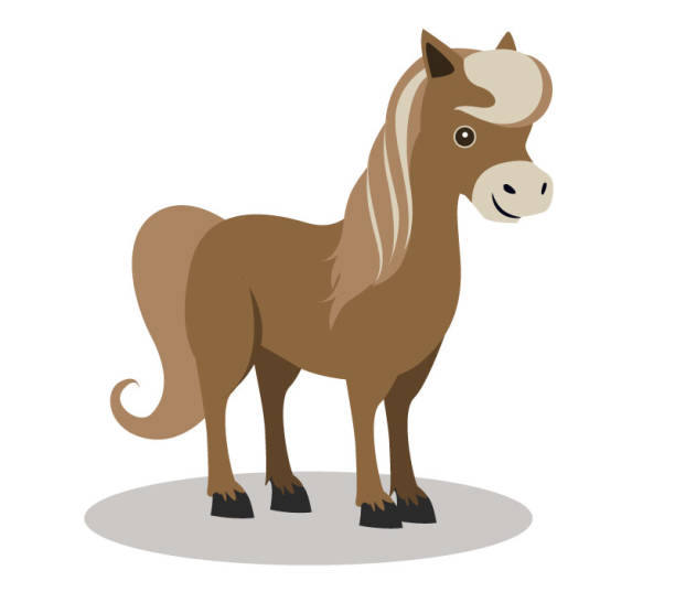 small brown horse - pony stock illustrations