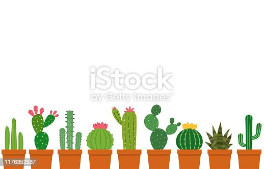 Small cactus pot vector set isolated on white background