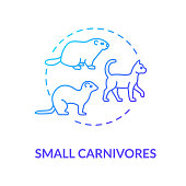 Small carnivores concept icon. Wild and domestic animals. Food chain predators. Land ecosystem idea thin line illustration. Vector isolated outline RGB color drawing