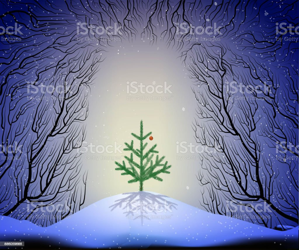 small Christmas tree growing in the way to the deep fairy forest, Christmas night fairy vector art illustration