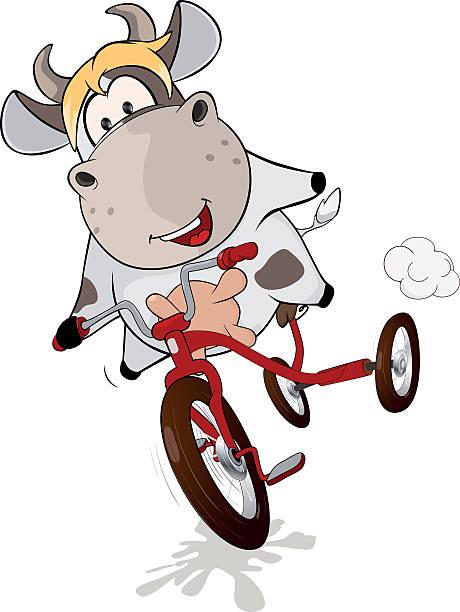 kleine kuh und dreirad comic - lustige kuh bilder stock-grafiken, -clipart, -cartoons und -symbole