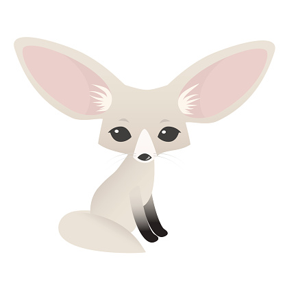Small cute fennec with big ears