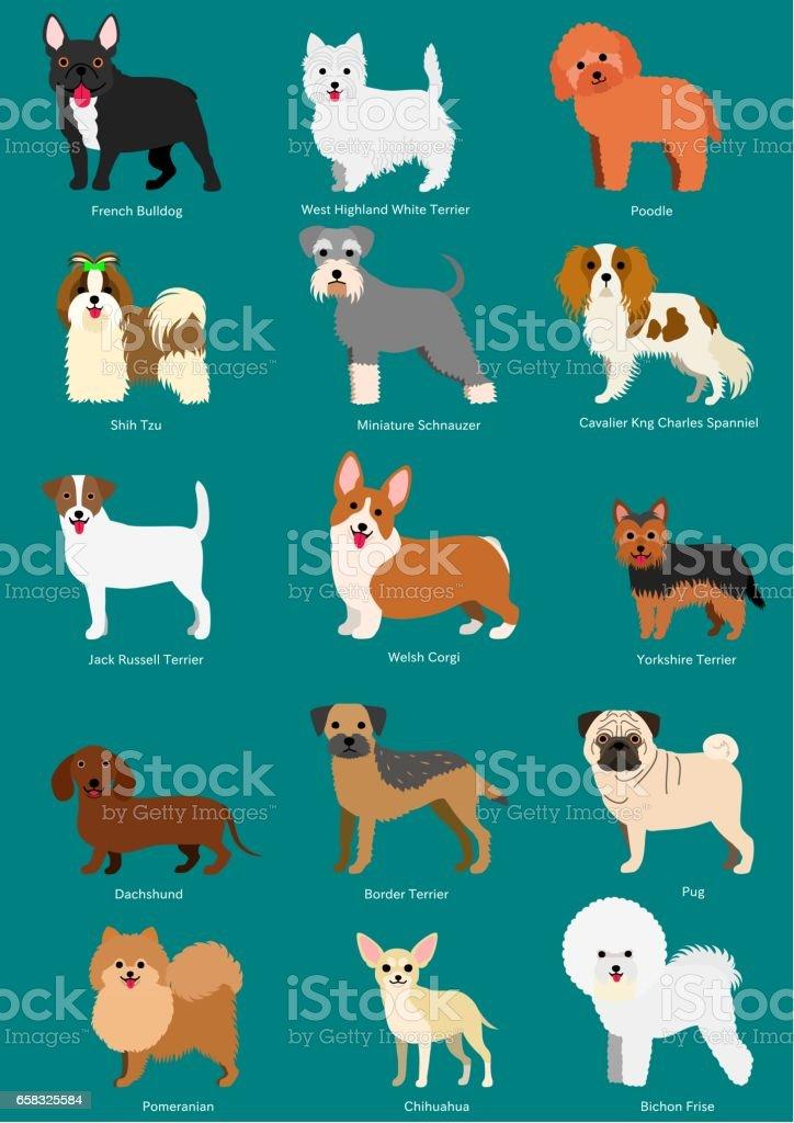 小型犬の品種の品種名で設定 ベクターアートイラスト