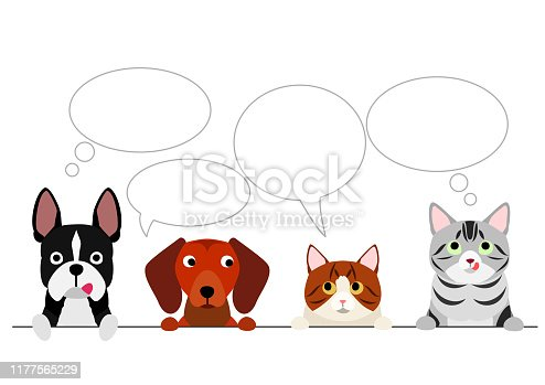 istock small dogs and cats border with speech bubbles 1177565229