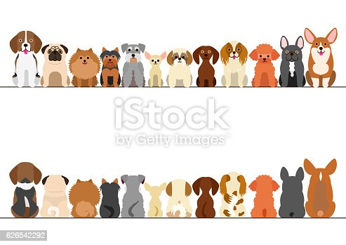 small dogs border set, front view and rear view.