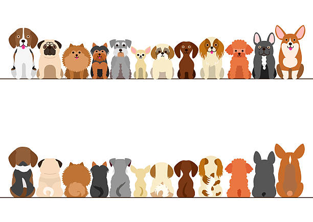 small dogs border set, front view and rear view - 犬点のイラスト素材/クリップアート素材/マンガ素材/アイコン素材