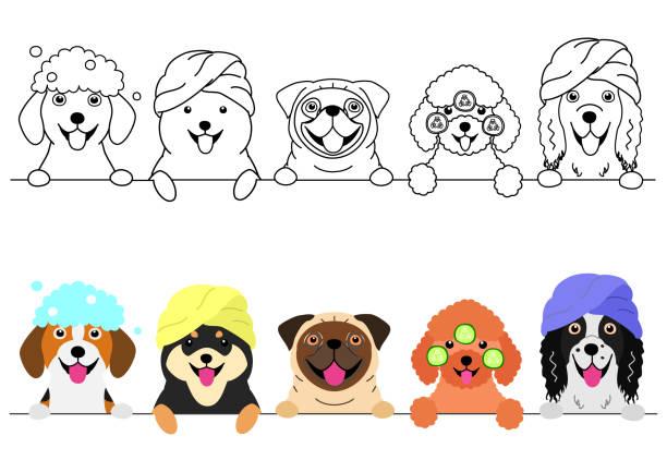 連続してスパを楽しむ小さな犬 ベクターアートイラスト
