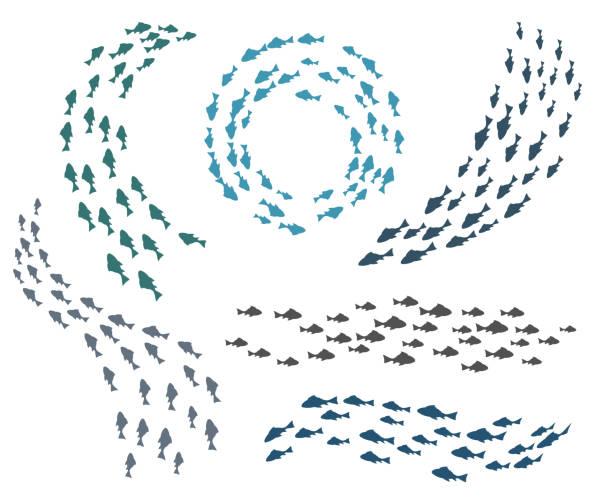 ilustrações de stock, clip art, desenhos animados e ícones de small fish groups - peixe