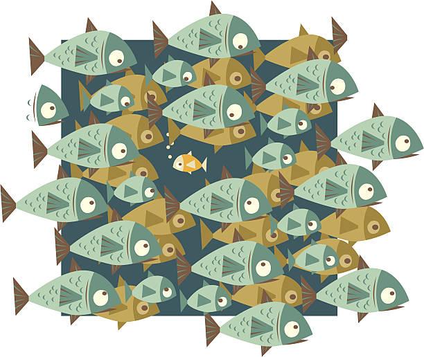 Best School Of Fish Illustrations, Royalty-Free Vector ...