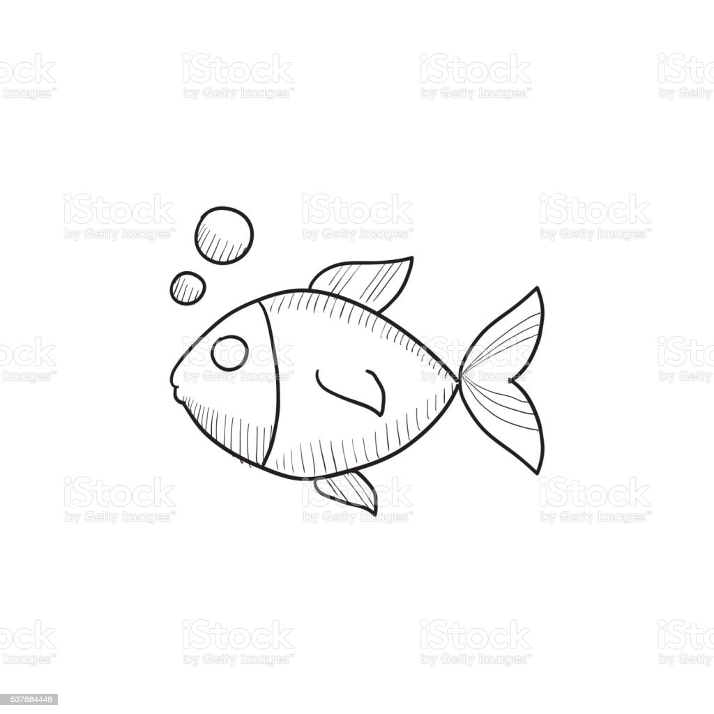 Small Fish Sketch Icon Stock Vector Art U0026 More Images Of Animal 537884448 | IStock