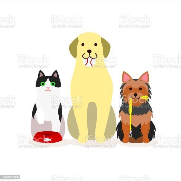 Small group of dogs and cat vector id646326860?b=1&k=6&m=646326860&s=612x612&h=wsbicpdsixjjwaeqzr6qsymm0 yruj5ijerrxrg2czs=