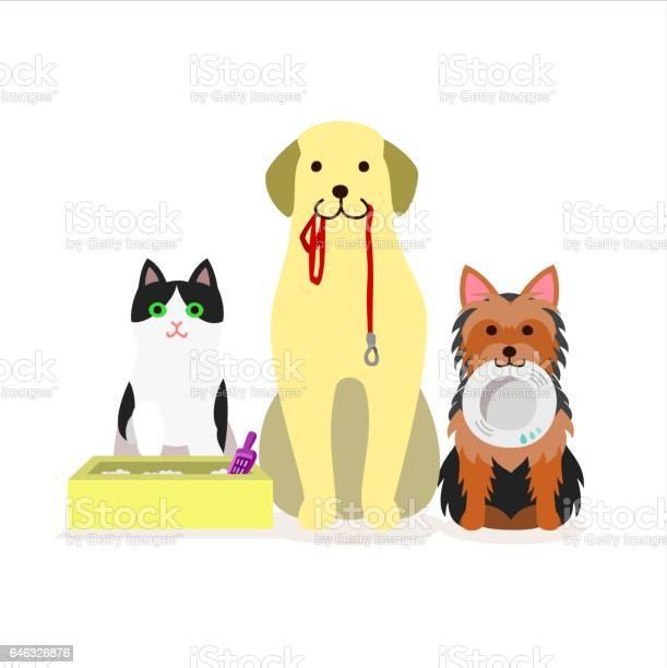 Small group of dogs and cat vector id646326876?b=1&k=6&m=646326876&s=612x612&h=vjmhltr6xkk4nv pxa z0fnqrg1oglwdr5nkiwphjgg=
