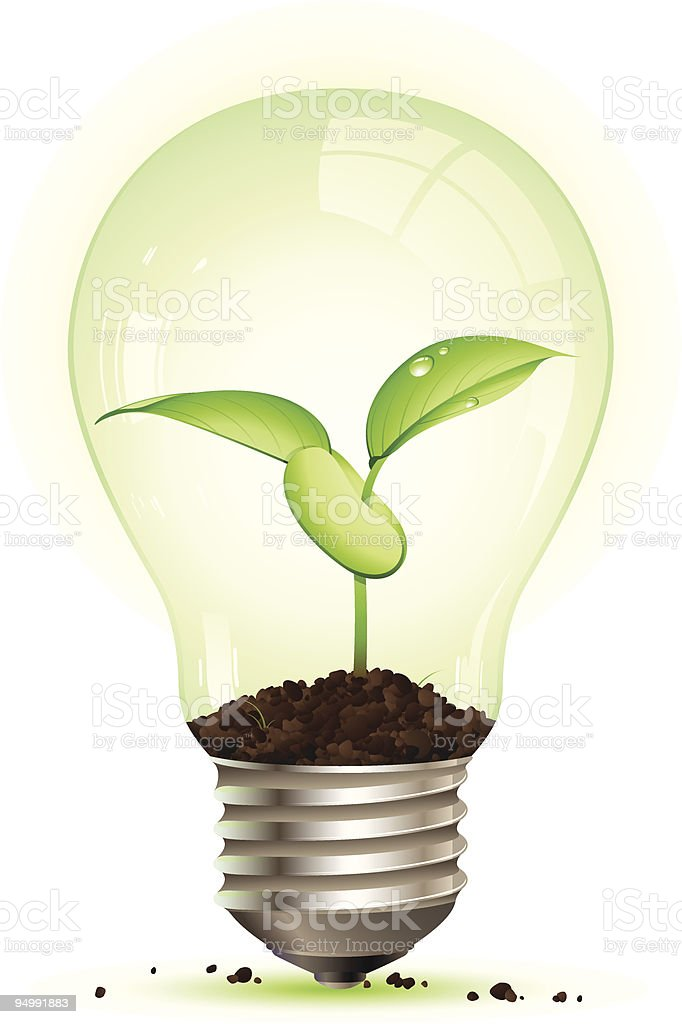 Small Plant Growing Inside Light Bulb Royalty Free Stock Vector Art