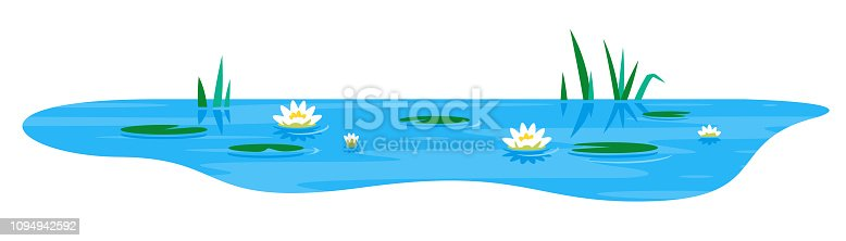 Small blue decorative pond with white water lily and bulrush plants, isolated on white, lake plants nature landscape fishing place