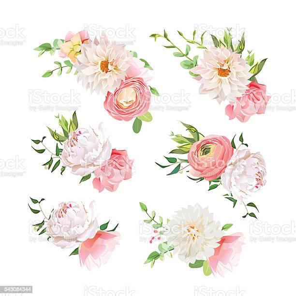 Small summer bouquets of rose peony ranunculus dahlia carnation vector id543084344?b=1&k=6&m=543084344&s=612x612&h=hu0n jrxcdu kwypy1iopjvfbncfg8e35hfphakjj1q=