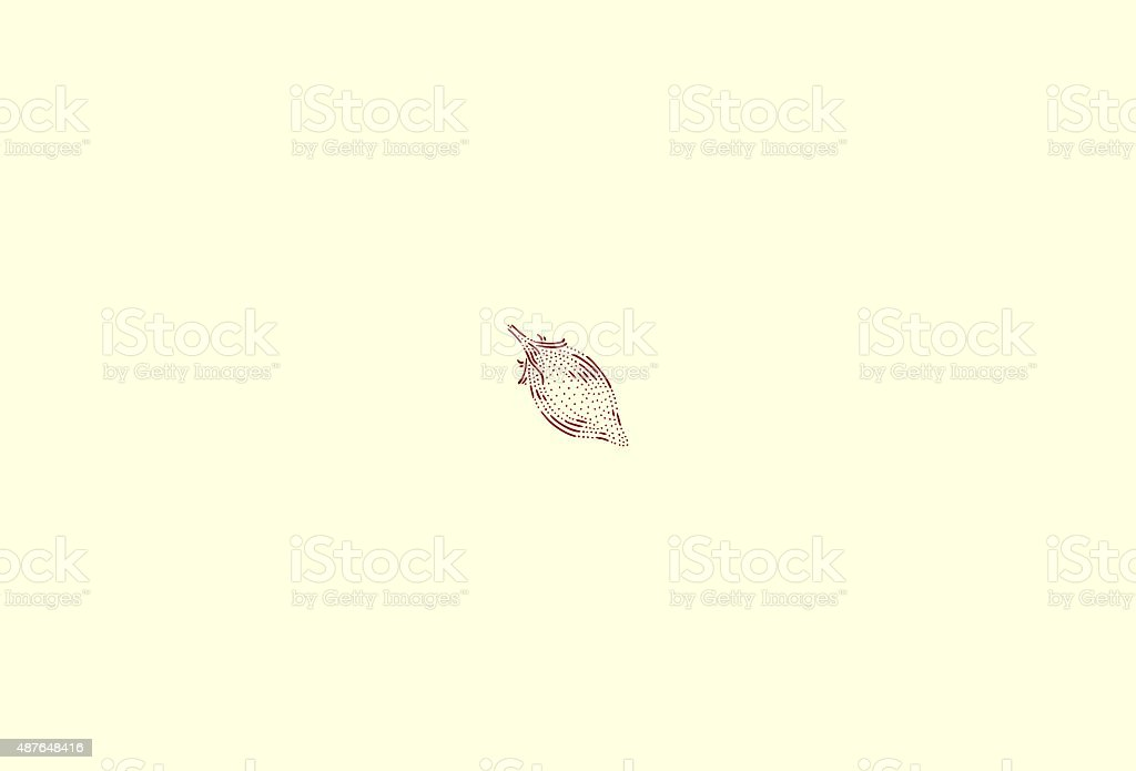 Small vesuvio tomato vector art illustration