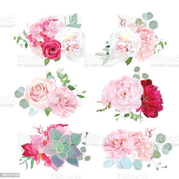 Small wedding bouquets of peony hydrangea camellia rose succ vector id852750786?b=1&k=6&m=852750786&s=612x612&h=3mnowqtvyhfvinurfiugogqwrtp1d6cczuuan5zreba=