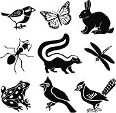 Vector icons of small woodland animals. Chickadee, monarch butterfly, rabbit, ant, skunk, dragonfly, frog, cardinal, blue jay.