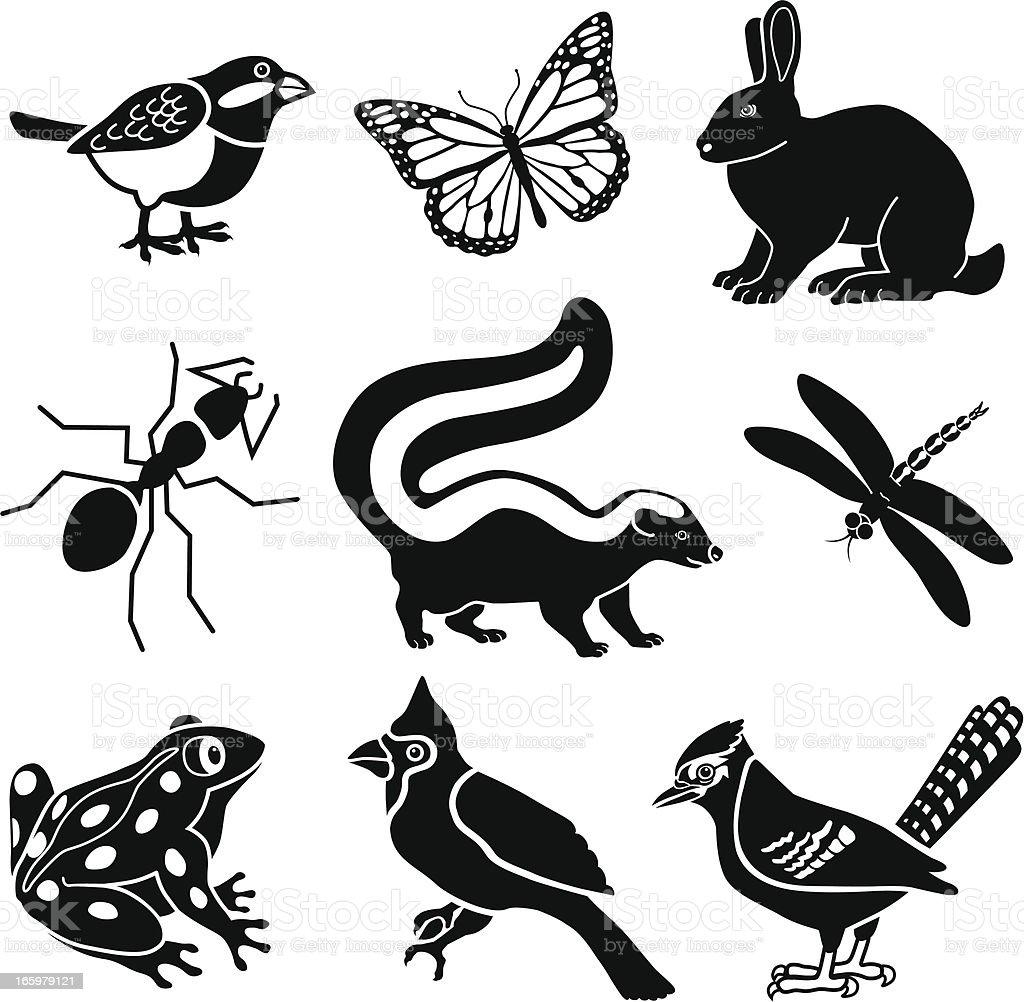 small woodland animals vector art illustration
