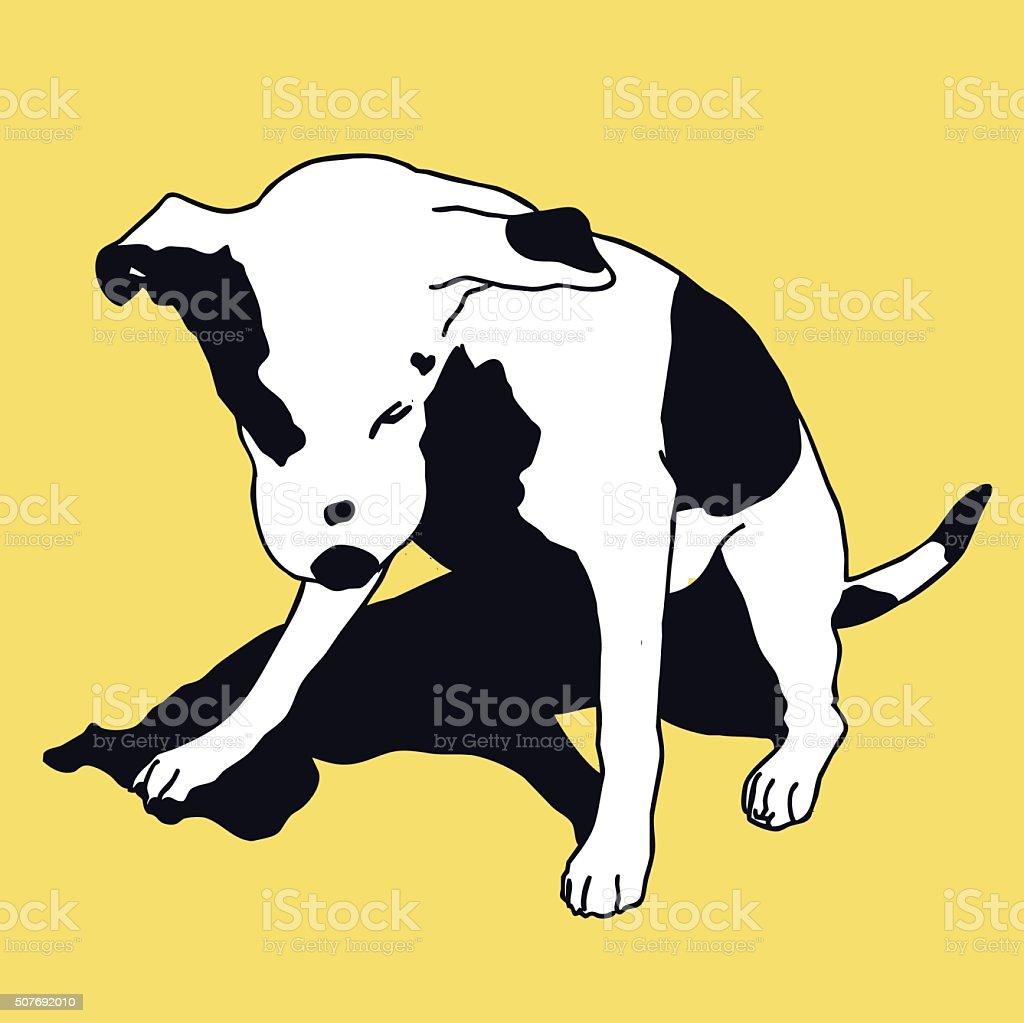 おしゃれな白黒の犬の色美しいダーリング ペット ます - イヌ科の