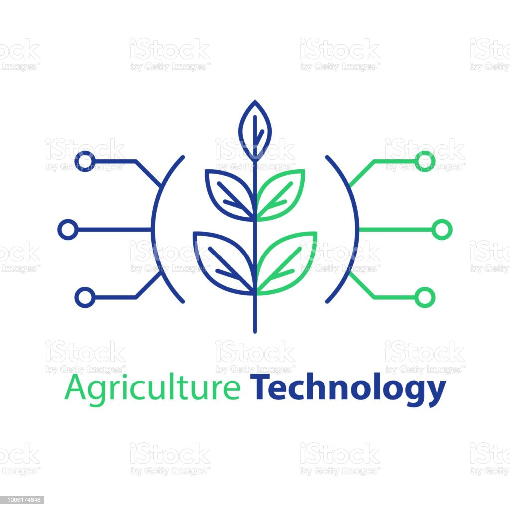 Smart Farming Agriculture Technology Plant Stem Innovation Concept