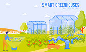 Smart Greenhouses Agricultural Robots Cartoon. Man Applies Robotics in Greenhouses on Farm. Robots Increase Agricultural Production and Improve Quality with Less Use Human Resources.