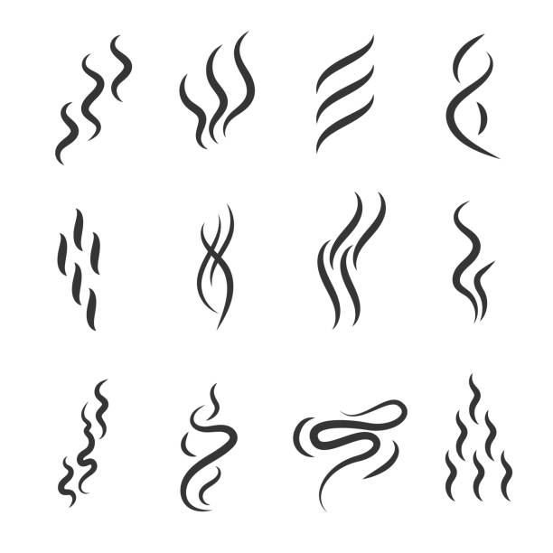 Smell Signs Black Thin Line Icon Set. Vector Smell Signs Black Thin Line Icon Set Include of Fume, Vapor, Scent, Odor and Aroma. Vector illustration of Icons scented stock illustrations