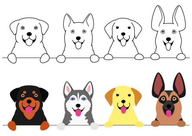 笑顔の大きな犬のボーダーセット ベクターアートイラスト