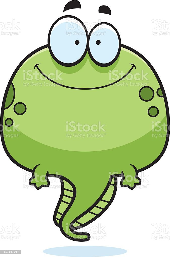 royalty free tadpole clipart clip art vector images illustrations rh istockphoto com tadpole clipart black and white frog tadpole clipart
