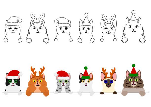 クリスマスの衣装ボーダーセットで笑顔の猫 ベクターアートイラスト