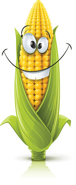 Best Corn On The Cob Illustrations, Royalty-Free Vector ...