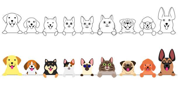 笑顔かわいい犬と猫のボーダーセット ベクターアートイラスト