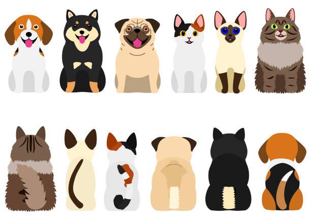 笑顔かわいい犬と猫セット ベクターアートイラスト