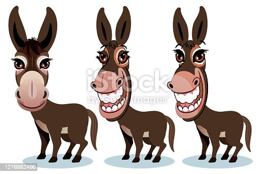 istock Smiling Donkey 1276662496