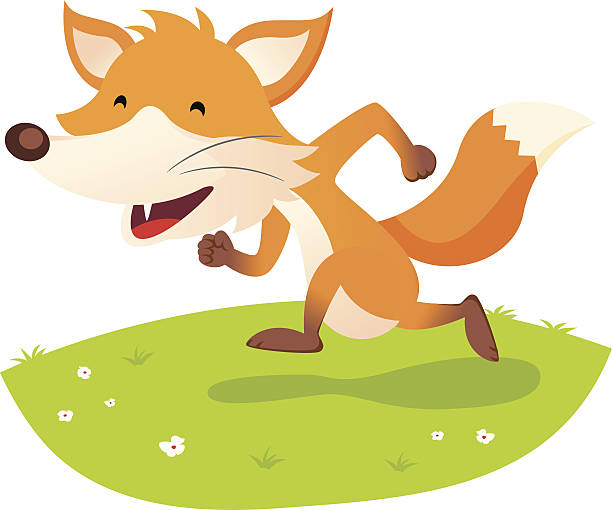 bildbanksillustrationer, clip art samt tecknat material och ikoner med smiling fox - single pampas grass