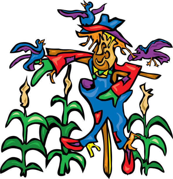 Smiling scarecrow in cornfield with friendly crows vector art illustration