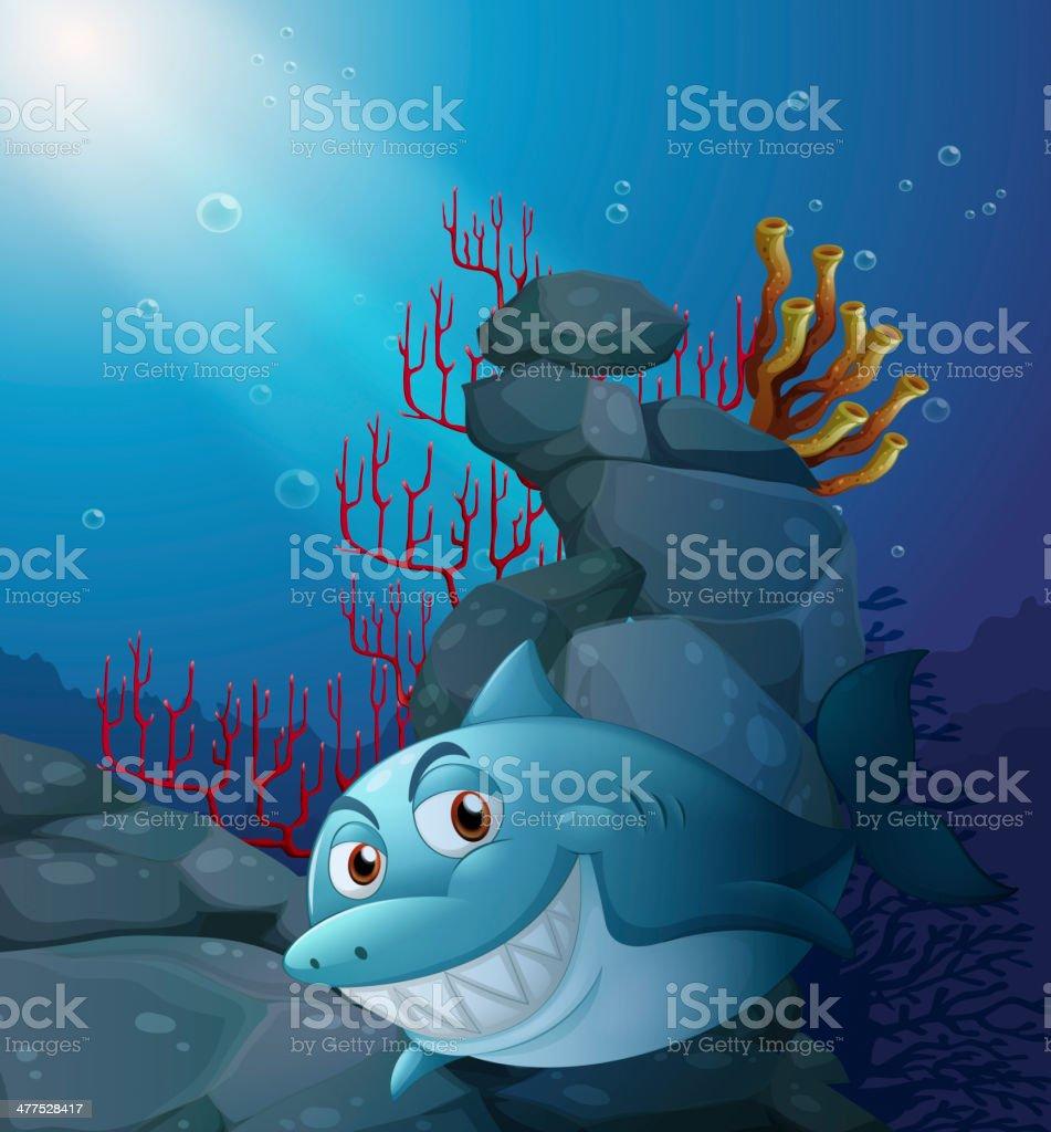 smiling shark under the sea near rocks vector art illustration