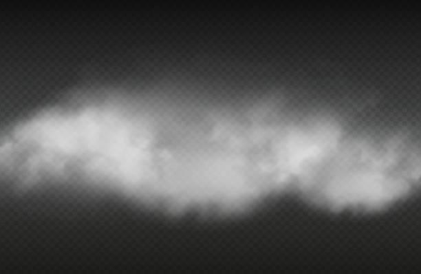 stockillustraties, clipart, cartoons en iconen met rook effect. vector realistische rook of voor geïsoleerde op transparante achtergrond - mist