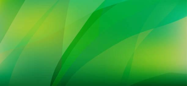 stockillustraties, clipart, cartoons en iconen met vloeiende groene abstracte achtergrond - green background