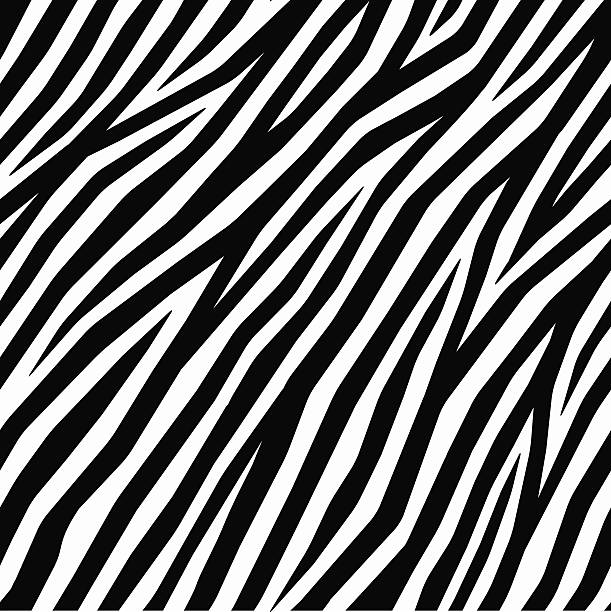 ilustrações de stock, clip art, desenhos animados e ícones de zebra impressão suave - padrões zebra