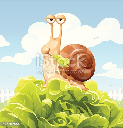 A snail in a garden eating salad. EPS 10, grouped and labeled in layers.